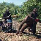 Coldplay AOAL Video Teaser