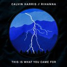 Calvin Harris x Rihanna This Is What You Came For